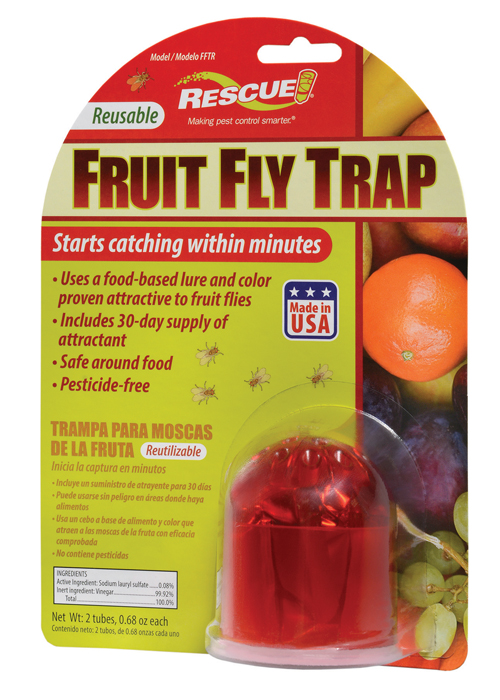 Fruit Fly Trap Image