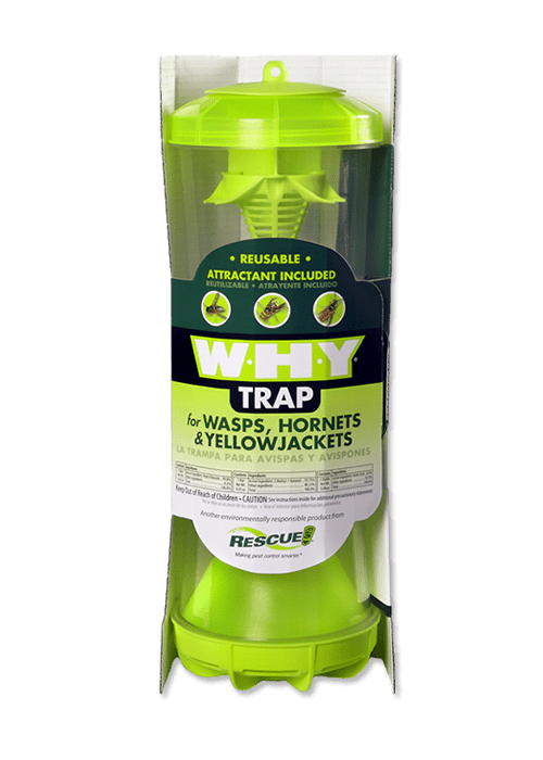 Wasps, Hornets & Yellowjackets - W.H.Y. Trap Image